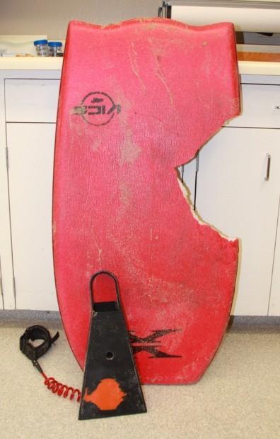 http://1.bp.blogspot.com/_bstXBEDnG9w/TMMfhbJ2BSI/AAAAAAAADxU/iva4hLrgYL4/s1600/shark+attack+boogie+board.jpg