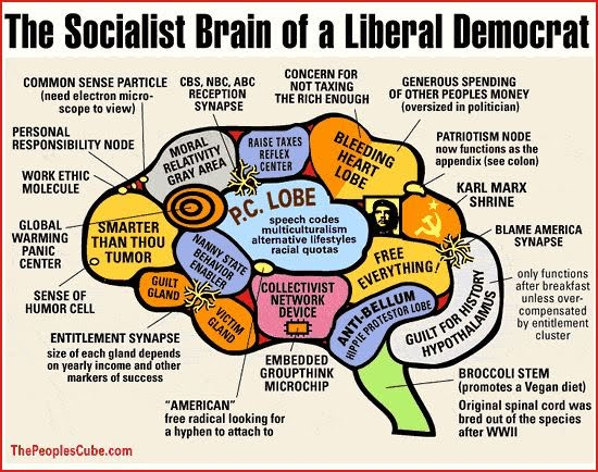 What underdeveloped section of the liberal brain grants clemency to the most ...