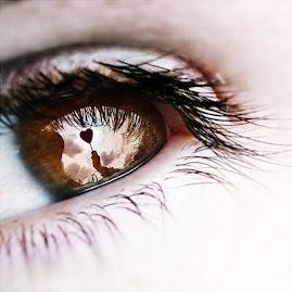 El secreto de sus ojos.