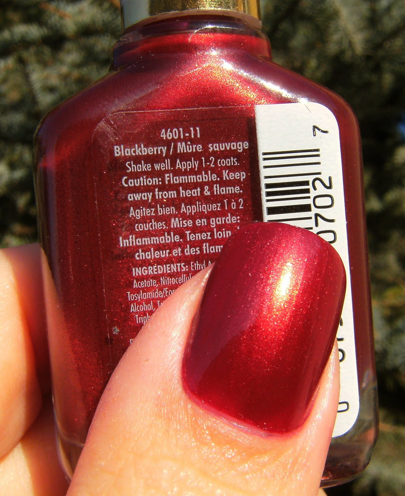Sally Girl Nail Polish Ingredients - Creative Touch