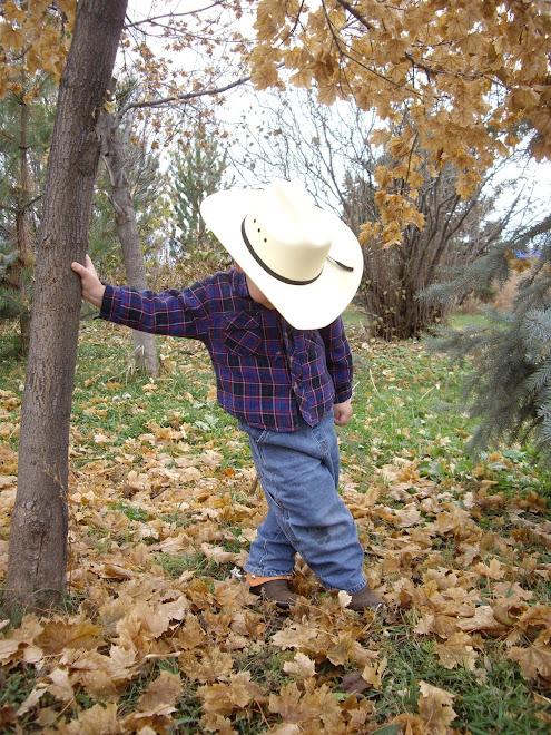 Timid Cowboy