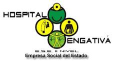 ESCUDO HOSPITAL DE ENGATIVA