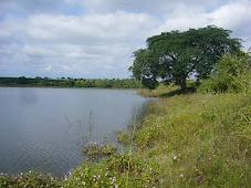 Laguna de Loma Pedregoza