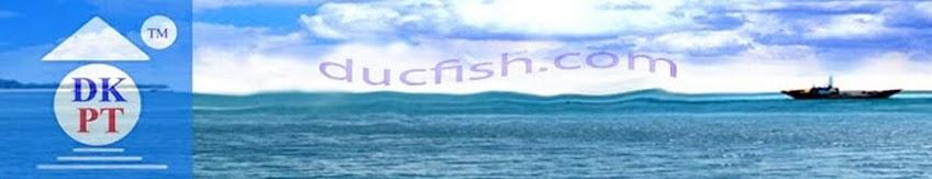 сушених анчоусів ,dried anchovy, makanan laut kering, YST, Herring