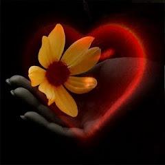O amor está em nossas mãos, o que fazer com ele também...