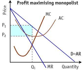 diagram of monopoly power economics   bsak unit 3 different objectives other than  economics   bsak unit 3 different objectives other than