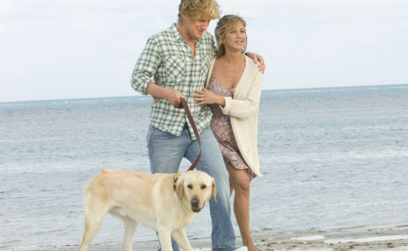 What Was Marley S Dog Name Marley And Me