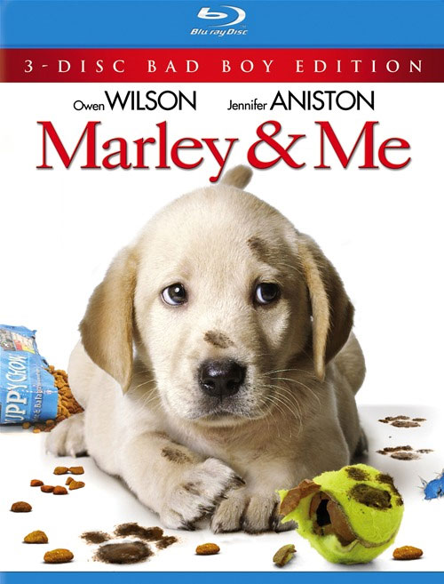 """a book review marley and me Book review """"marley & me"""" essays 1058 words 5 pages i have never  considered that a book about a dog could be so appealing and full of deep  thoughts."""