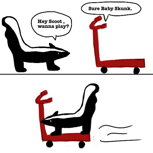 [Baby+Skunk+rides+Scoot]
