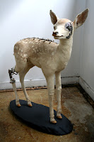 steampunk taxidermy, fixed - fawn