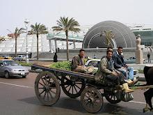 لقطات طريفة من الشارع المصرى