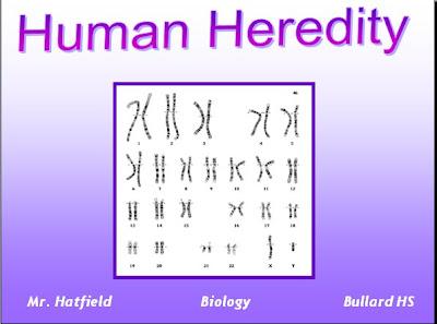 POWER POINT  HUMAN HEREDITYHuman Heredity