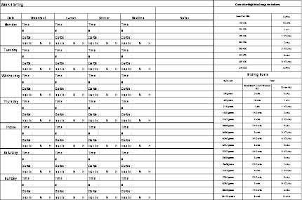 daily tracking sheet