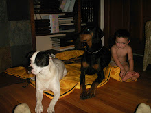 Lucy, Chopper and Carter