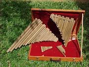 Estuche y varias flautas