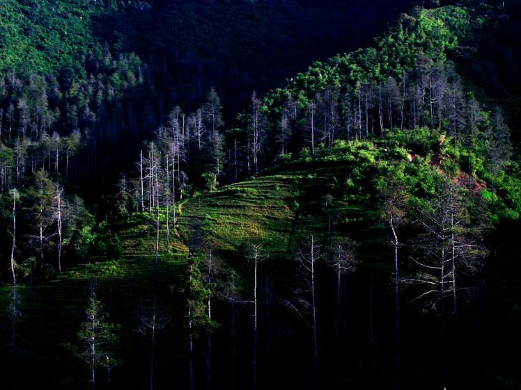 Gunung Manglayang di pagi hari. 2009