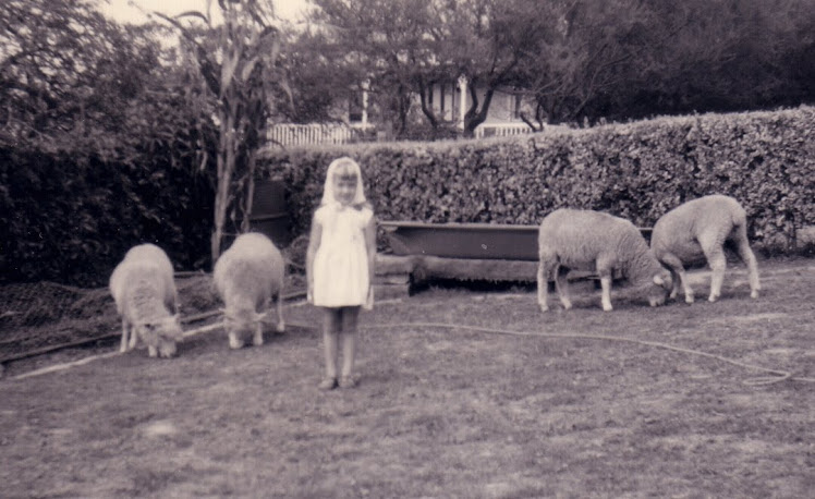 sheep lover from an early age!