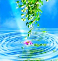 solucion ambiental