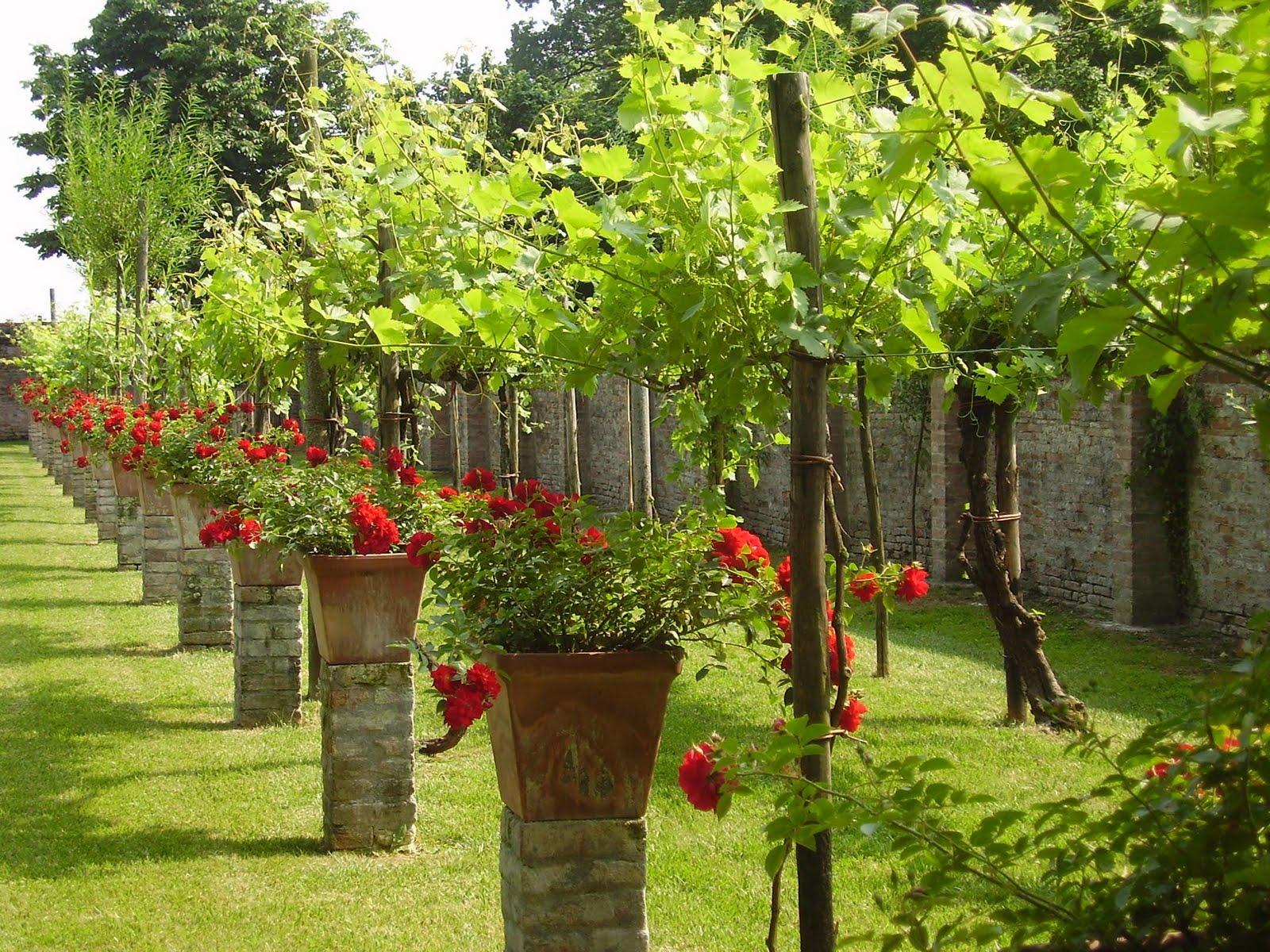 Verdiprogetti architettura del paesaggio progetti di giardini for Giardini progetti