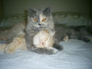 Duda e Sophia - Meus amores!