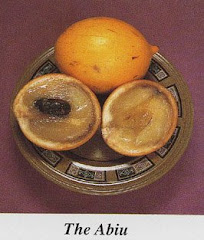 Abiu (Creme Caramel Fruit)