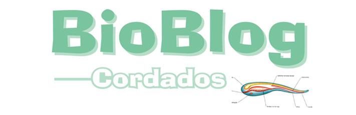BioBlog: Cordados (2ºA)