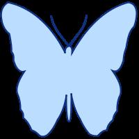 SVGRendererで描画した蝶