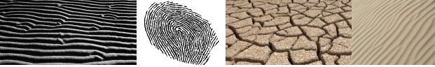 "Fingerprint ""RIDGES"", others, and ""dried clay"""