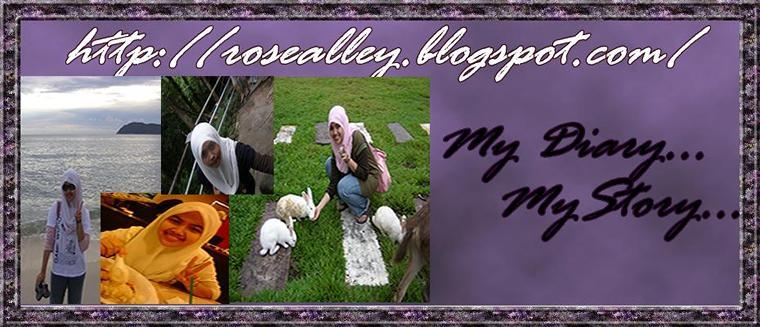 My Diary My Story