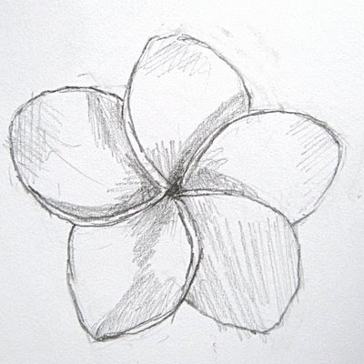 How To Draw Hawaiian Flowers Pictures Apps Directories