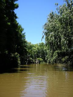 River - Delta del Parana - Argentina