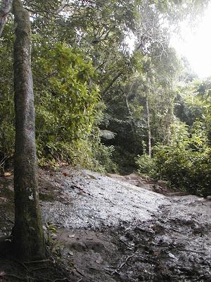 Trilha Cachoeira da Feiticeira