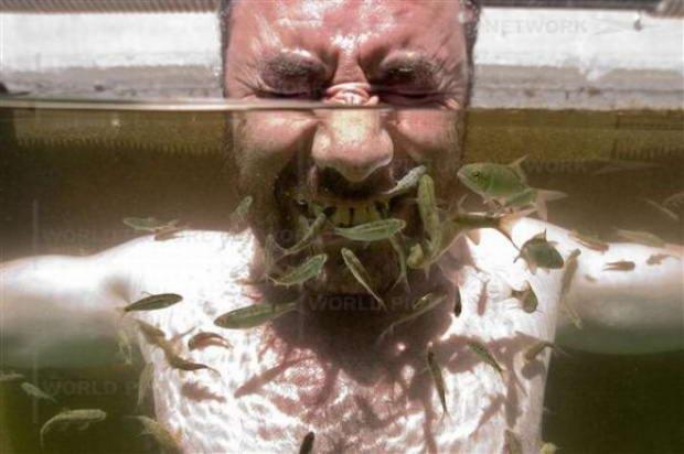 Humor machine unique fish spa treatment for The fish doctor