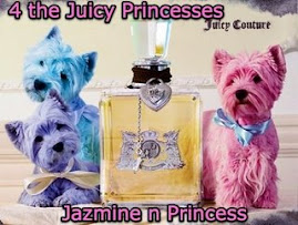 Juicy Princesses