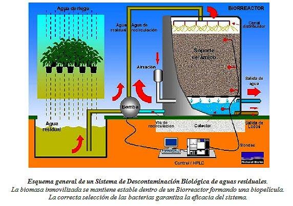 Tratamiento de aguas residuales tratamiento de aguas - Tratamientos de agua ...