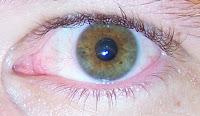 his servant's eye