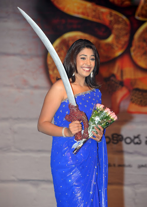 richa gangopadhyay new n spicy in blue saree cute stills