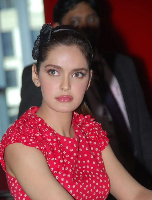 shazahn padamsee new from event actress pics