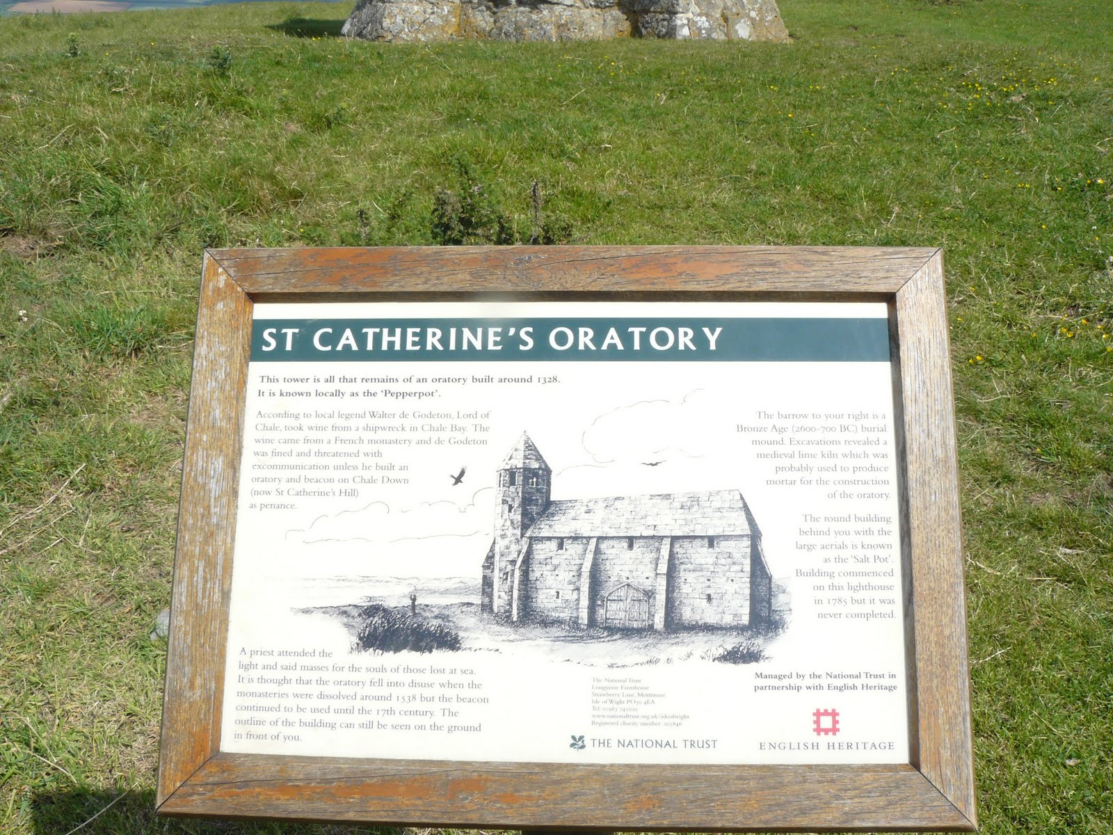 St Catherines Island Bull