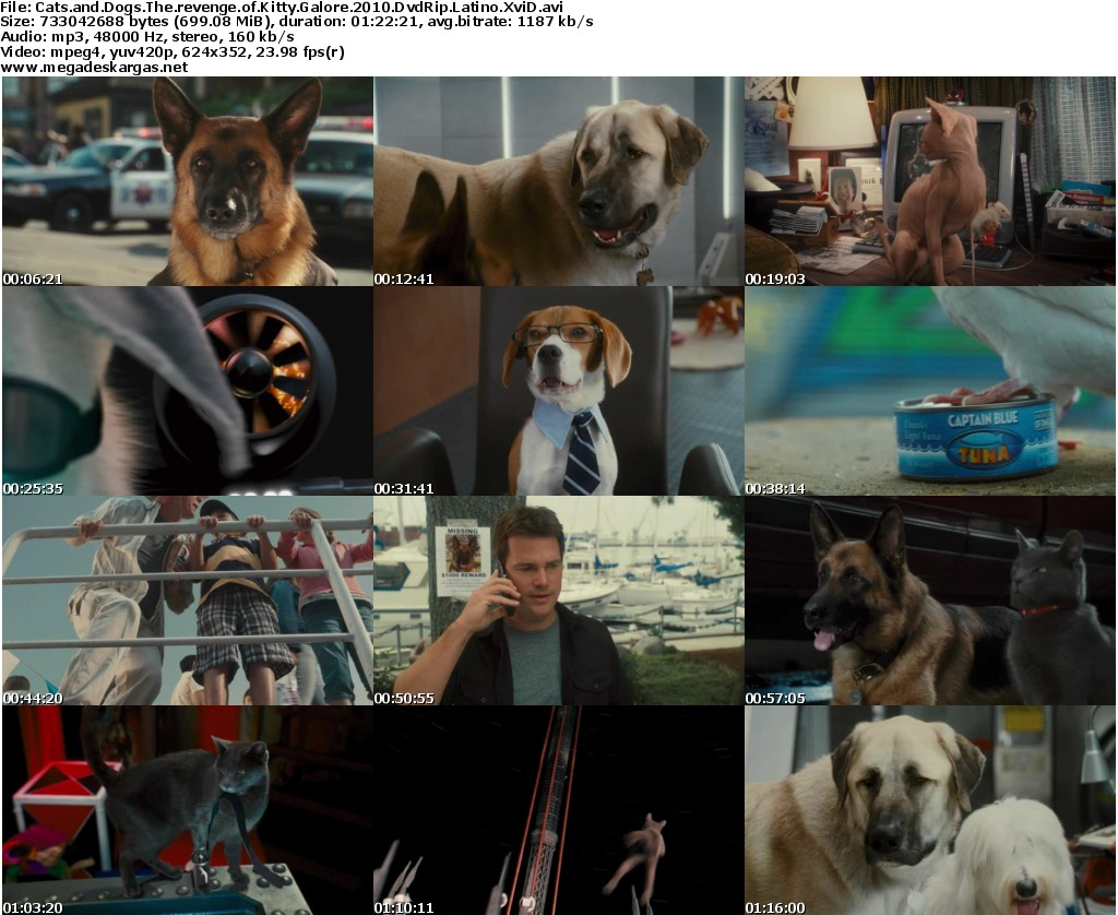 Dvd For Dogs To Watch Uk