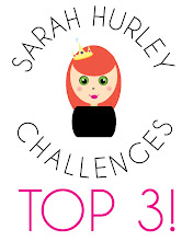 Very Proud to be Top 3 at Sarah Hurley Challenges