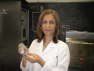 Professora Afsaneh Rabiei