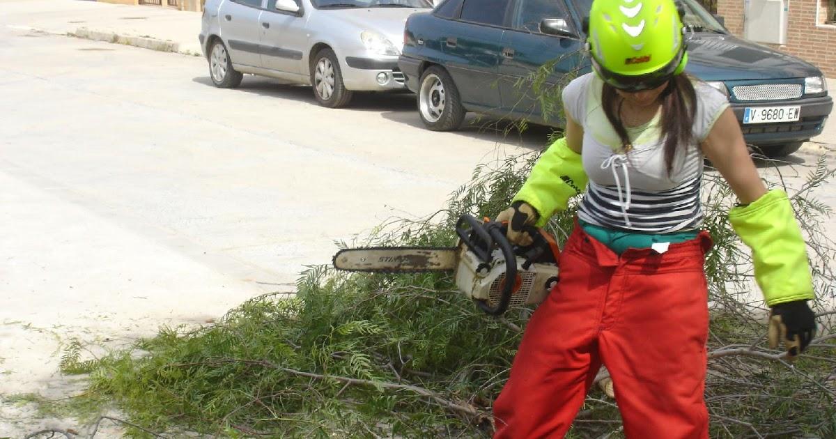 Poda y tala de arboles y palmeras en valencia escuelas for Aprender jardineria