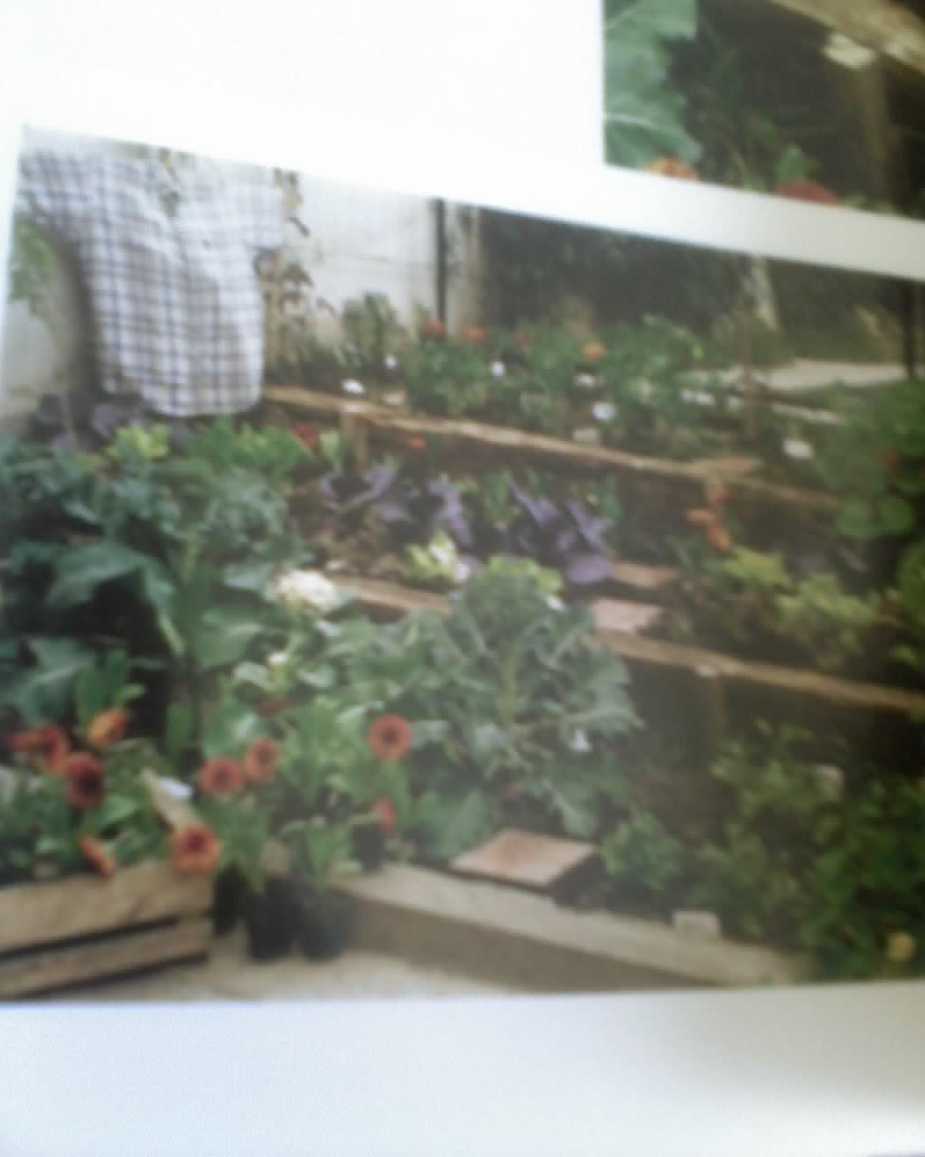 Boutiquedehuerta mis trabajos en libro huerta f cil la for Libros de jardineria y paisajismo