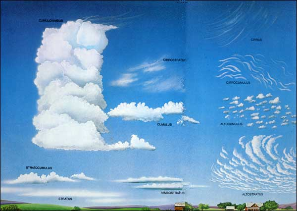 Cloud Type Worksheets Different Types of Clouds