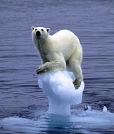 Causas que contribuem para o aquecimento global