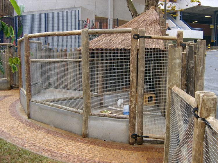 Idéias para campos e jardins Mini Zoo