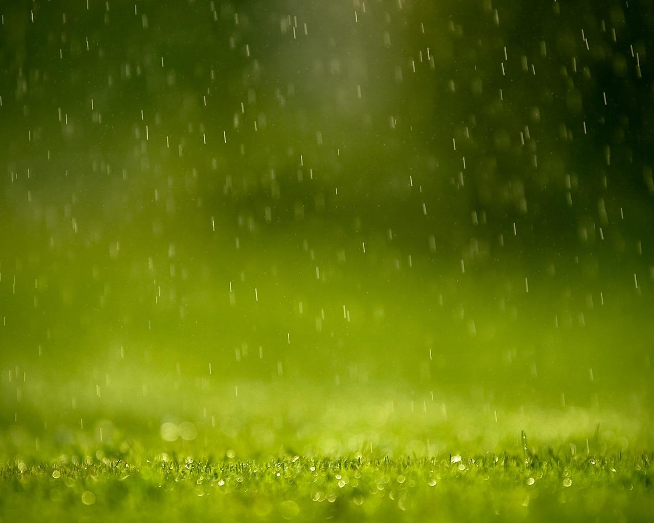 http://1.bp.blogspot.com/_cWcuJM9QIG4/TD8j_tOJIbI/AAAAAAAAB9A/6NIcR5Z_yoQ/s1600/rain%2Bwallpaper%2Bdownload+z.jpg