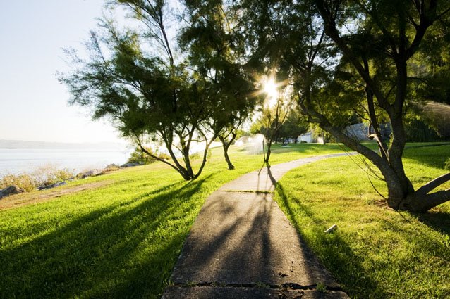 fotos de um jardim lindo : fotos de um jardim lindo:Tudo Junto e Misturado: HARMONIAS E MELODIAS