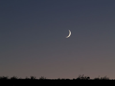 Moon Above Desert